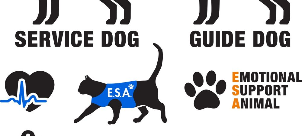 A graphic depicting service and support animals