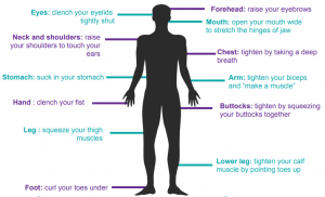A diagram used for Progressive Muscle Relaxation highlighting ways to move forehead, eyes, mouth, neck and shoulders, chest, stomach, arm, hand, buttocks, leg, lower leg, and foot.