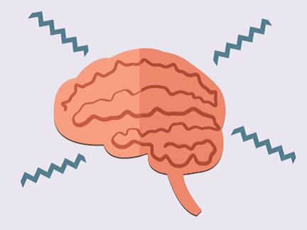 A brain is shown.